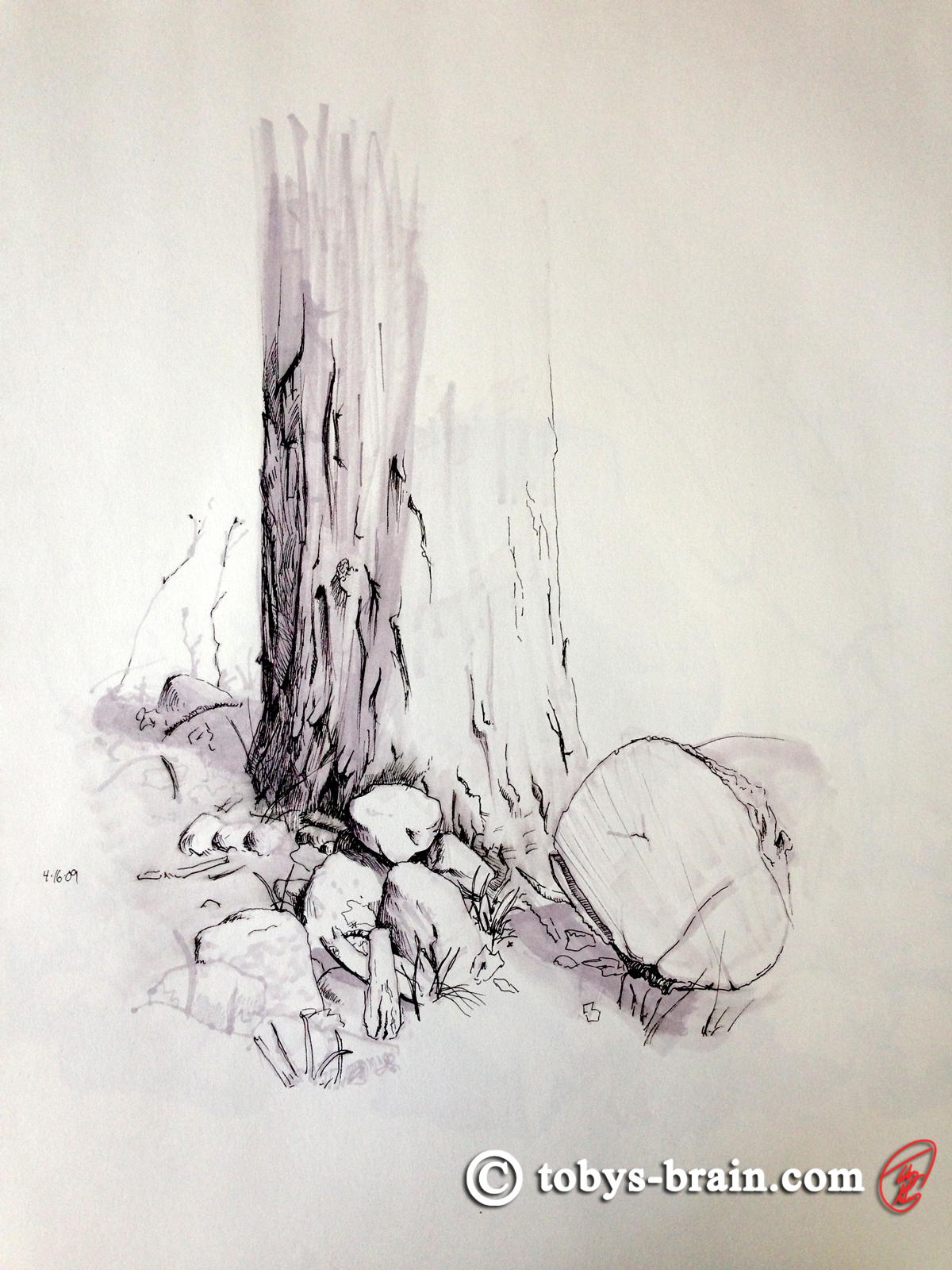 Toby-Gray-maple-tree-pen-and-marker-sketch