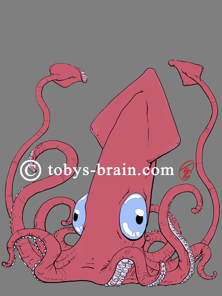 Toby-Gray-MPNSquid-5