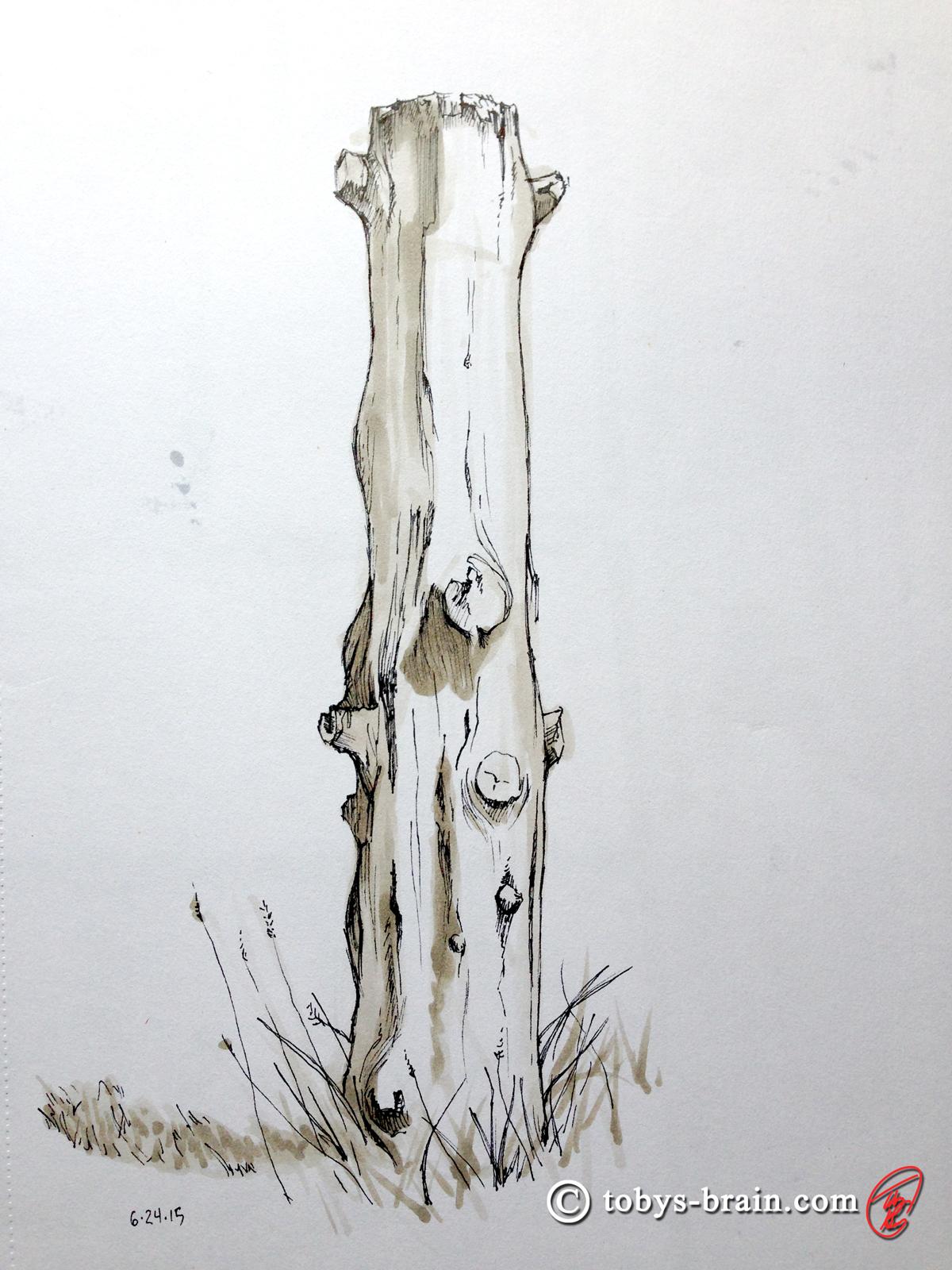Toby-Gray-stump-post