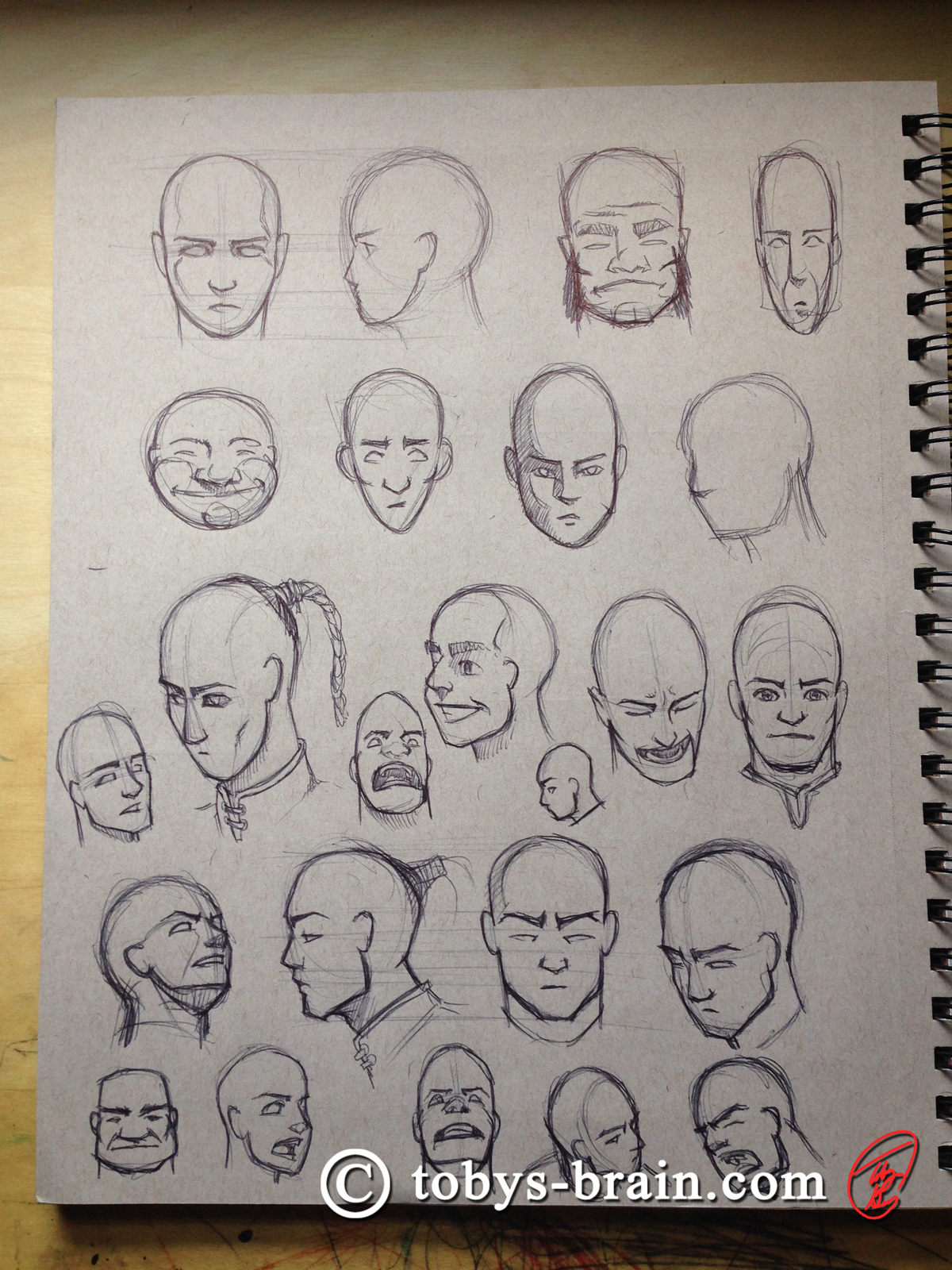 Toby-Gray-dragon-monk-head-studies