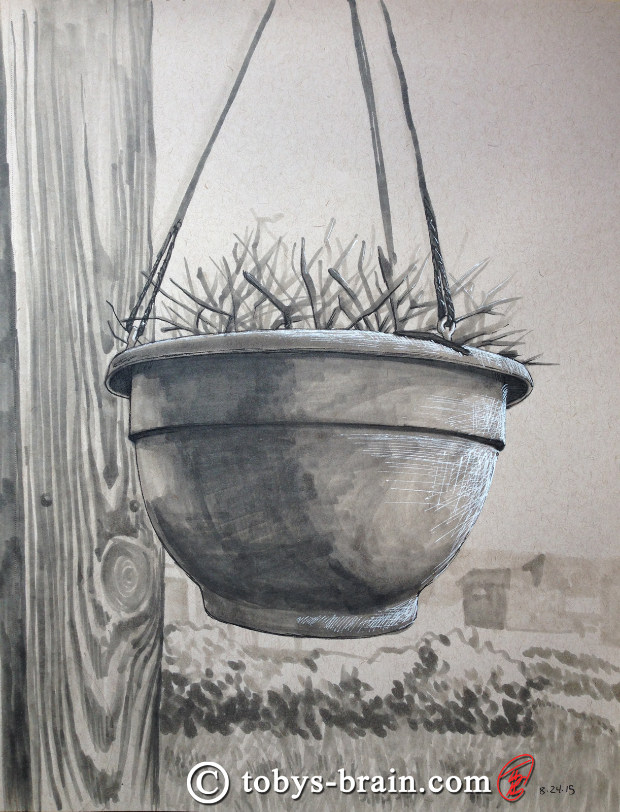 Toby-Gray-dad's-potted-plant