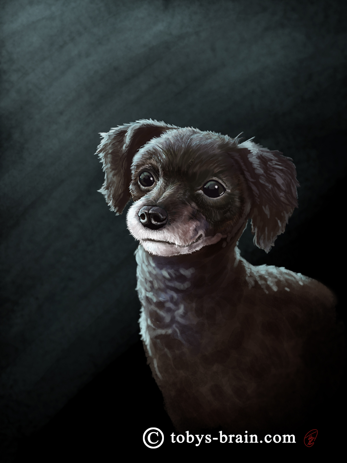 Pet portrait of L.S. Gagnon's late dog, Coco.