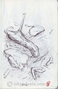"""This is the first sketch I did at Camp Bell. Our camp site  had a lot of cool trees, rocks, and roots. This particular sketch was a bit distracted and rushed, we were in """"hurry up and wait"""" mode for checking in, and there was a lot of commotion from the boys setting up their tents and then getting antsy while waiting."""