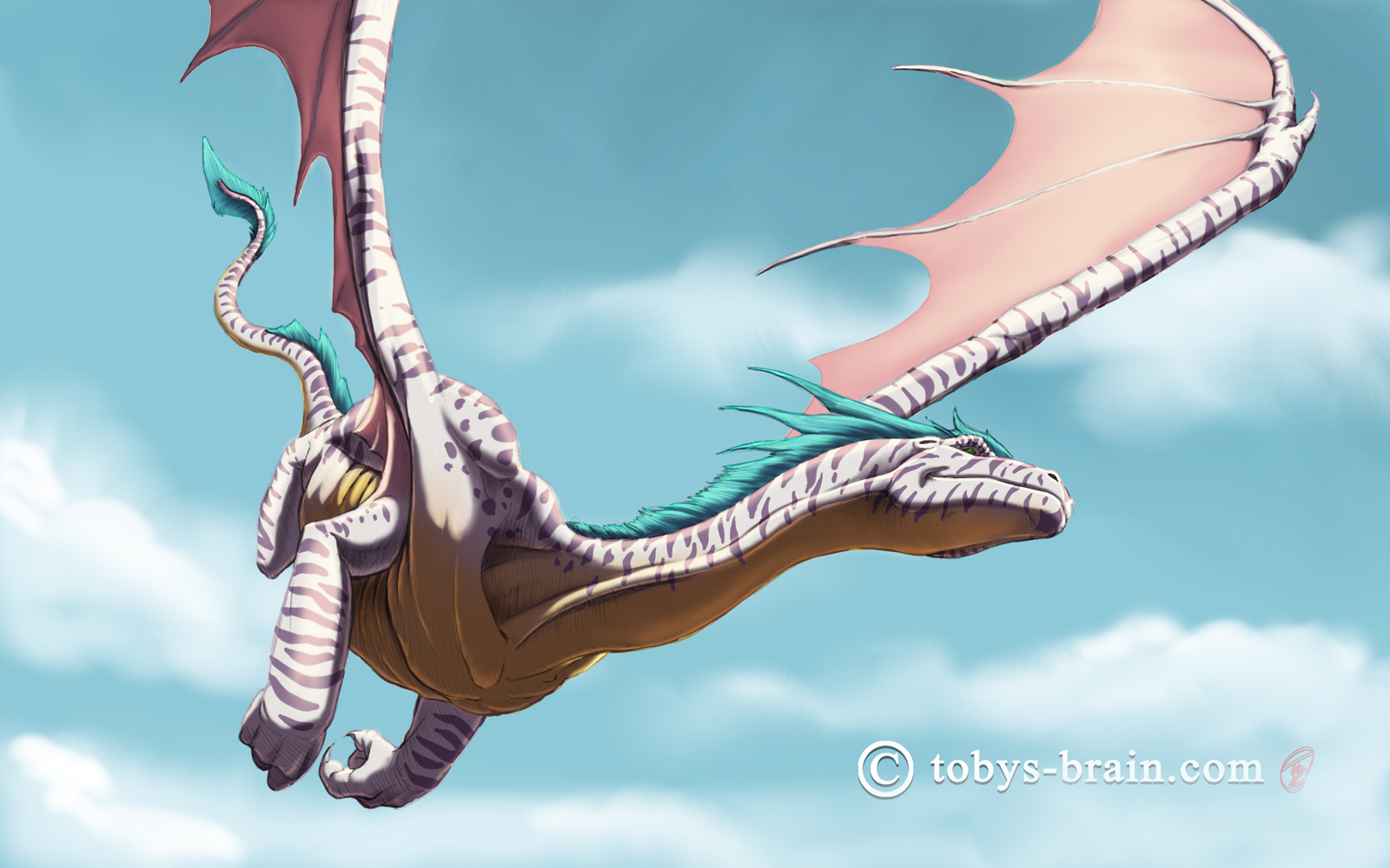toby-gray-teal-crested-leopard-dragon